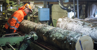 Hakkarainen kutsui EU-eliitin tutustumaan Suomen metsänhoitotapoihin