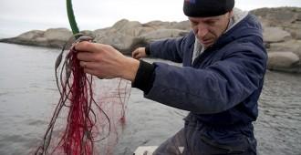 PS: Kalastuslakiesitys tekee kotitarvekalastajista yrittäjiä