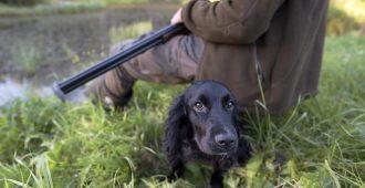 Huru ja Simula: Metsästäjät tekevät arvokasta työtä Suomen luonnon eteen