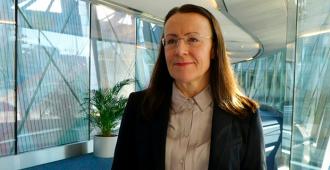 """Pirkko Ruohonen-Lerner: """"Terrorismin uhasta on tullut todellista kaikissa EU-maissa"""""""