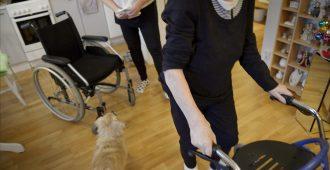Perussuomalaiset Naiset tukevat omaishoidontuen verovapautta