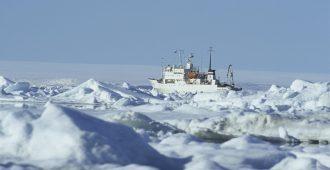 llmastoaktivistit seilasivat joukolla tutkimaan sulavaa Arktista – juuttuivat jäihin