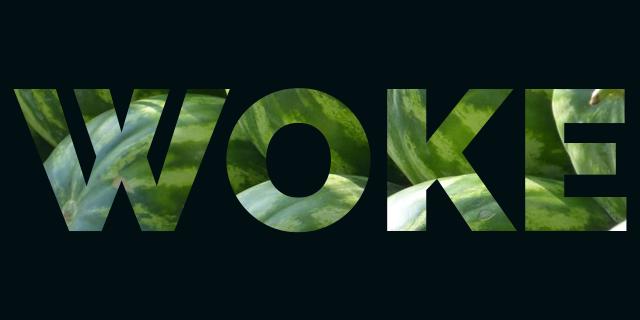 """Halla-aho: """"Woke-kulttuuri vaatii täydellisyyttä ja puhdasoppisuutta eläviltä ja kuolleilta"""""""